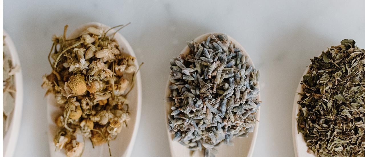 ¿Qué hay de similar y de diferente entre los Tés, los Blends de té, las Tisanas y las Infusiones?